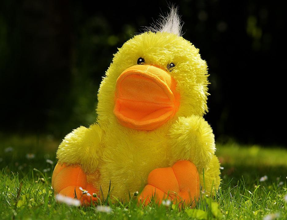 Duck, Funny, Soft Toy, Toys, Children, Meadow, Cute