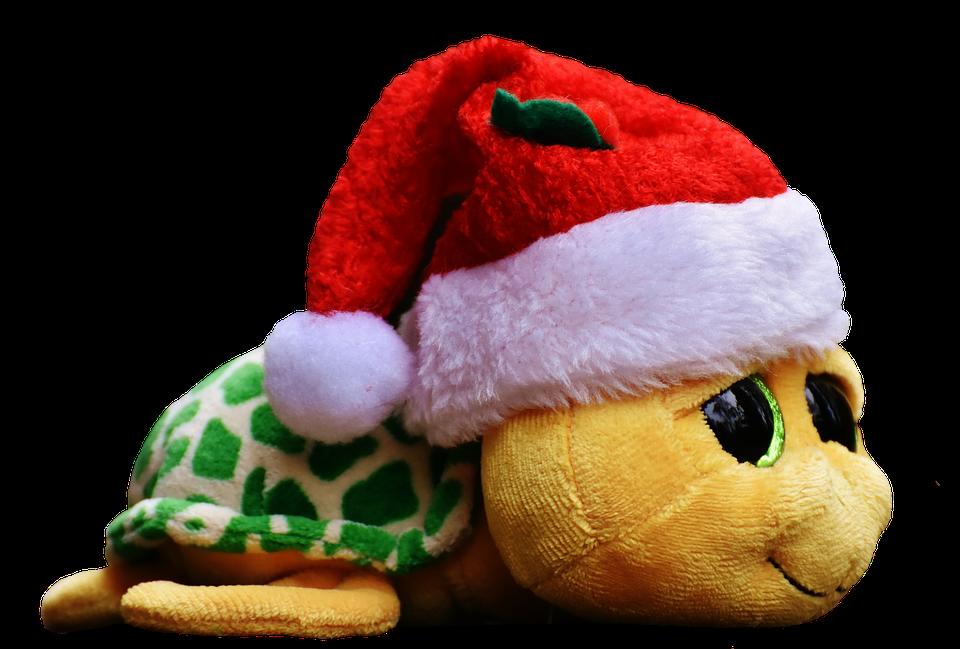 Christmas, Turtle, Soft Toy, Cute, Santa Hat, Funny