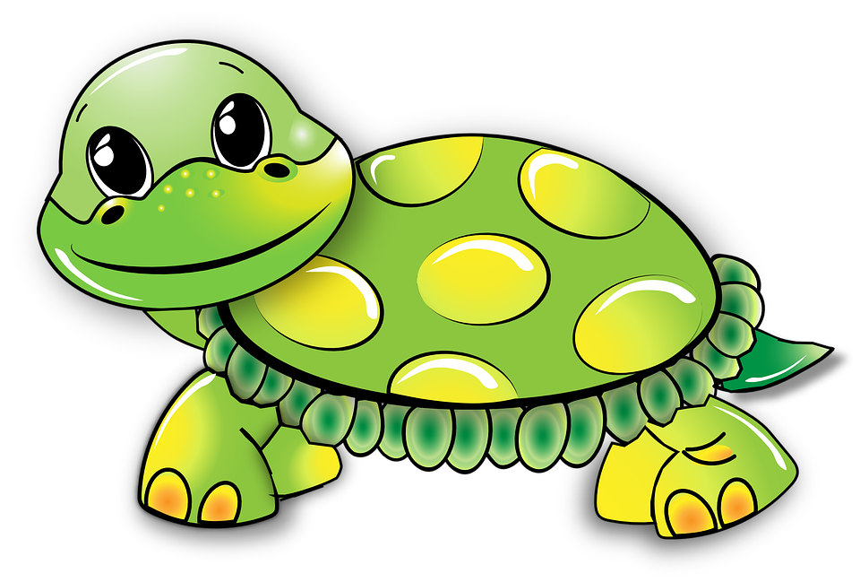 Turtle, Funny, Green