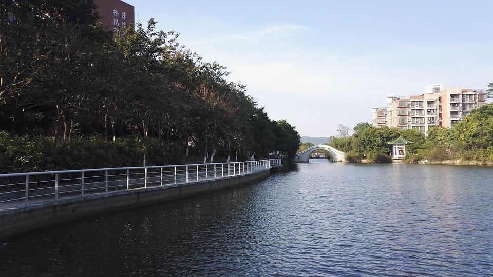 Lake, Gallery, Views