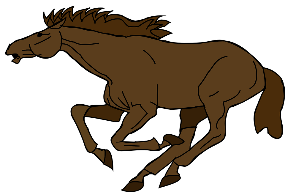 Horse, Galloping, Mare, Running, Gallop, Fast, Equine