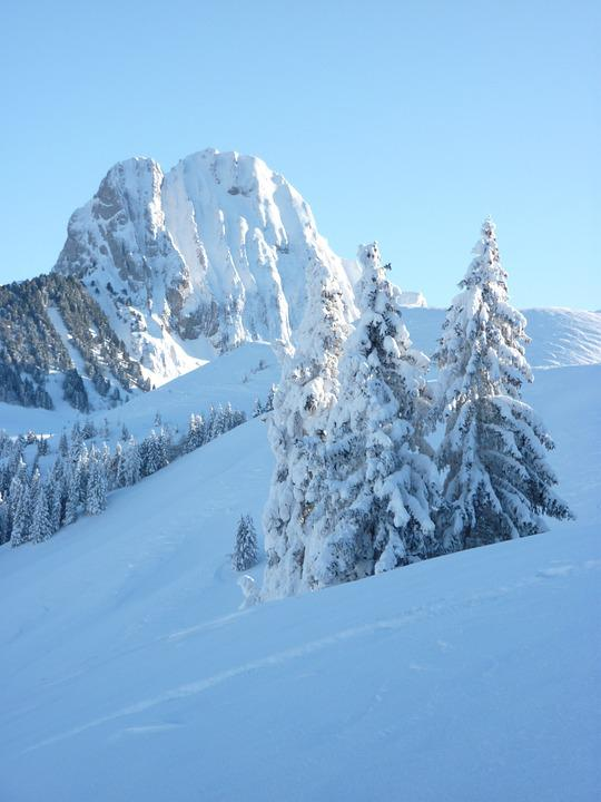 Wintry, Gantrisch Massif, Switzerland, Mountains, Firs