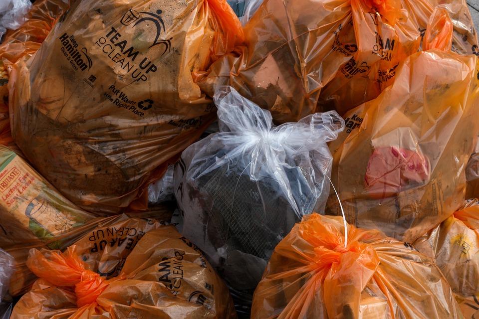 Cleanup, Clean Up, Community, Garbage Bags, Garbage