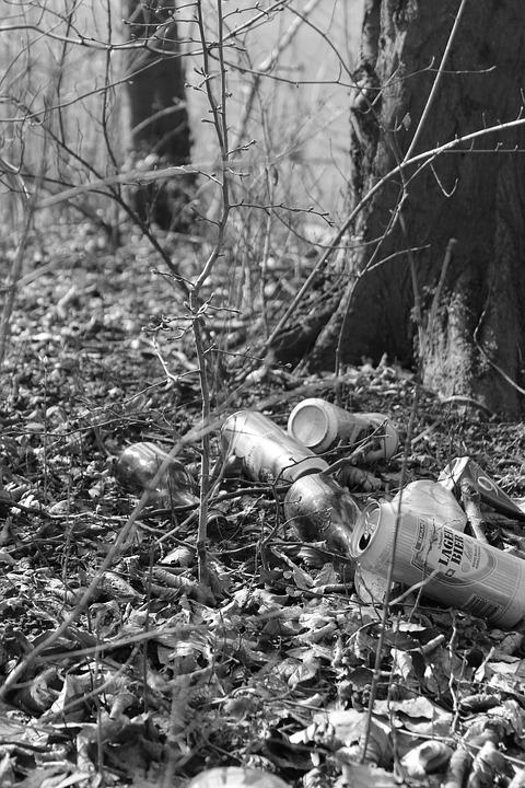Black And White, Nature, Mood, Autumn, Garbage