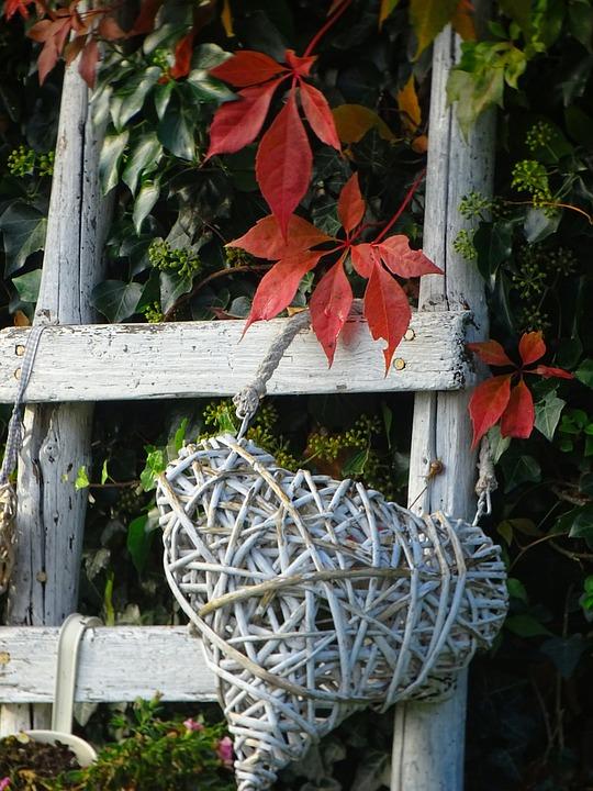 Autumn, Garden, Colors Of Autumn