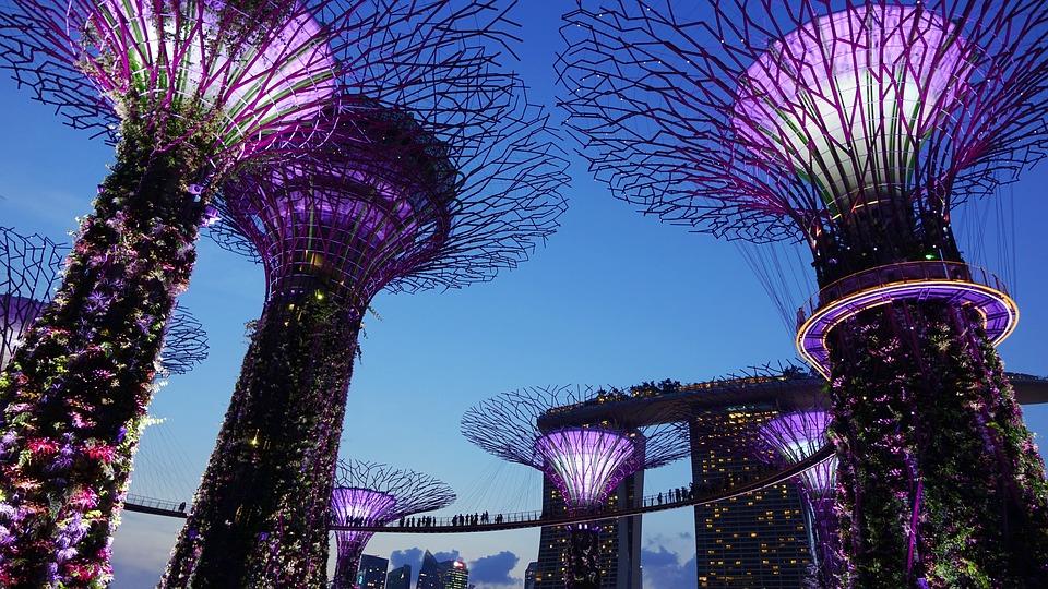 Garden By The Bay, Singapore, Night, Lighting, Landmark