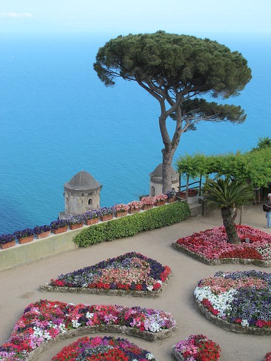 Capri, Tree, Garden, Italian, Coast, Coastline