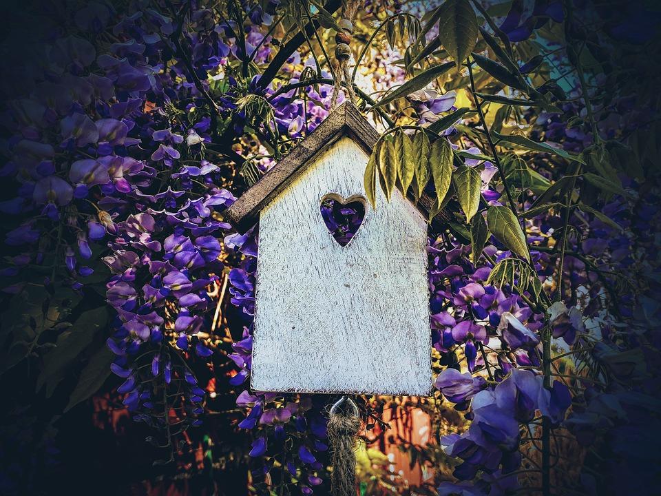 Aviary, Blue Rain, Decoration, Garden, House, Wood