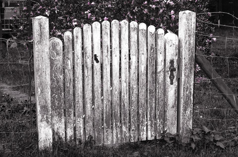 Door, Garden Door, Garden Fence, Fence, Wooden Door