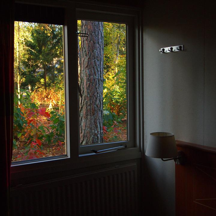 Room, Window, Vista, Autumn, Garden, Colors, Forest
