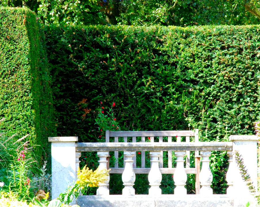 Garden, Green, Bench, Stone, Fences, Hedge, Green Fence
