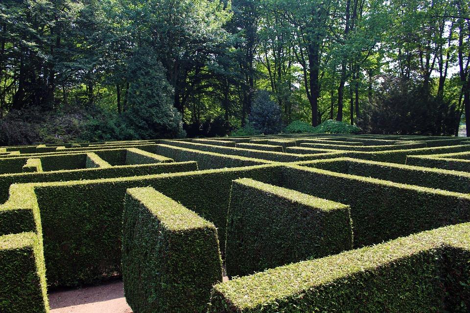 Labyrinth, Maze, Garden, Hedge, Structure, Green