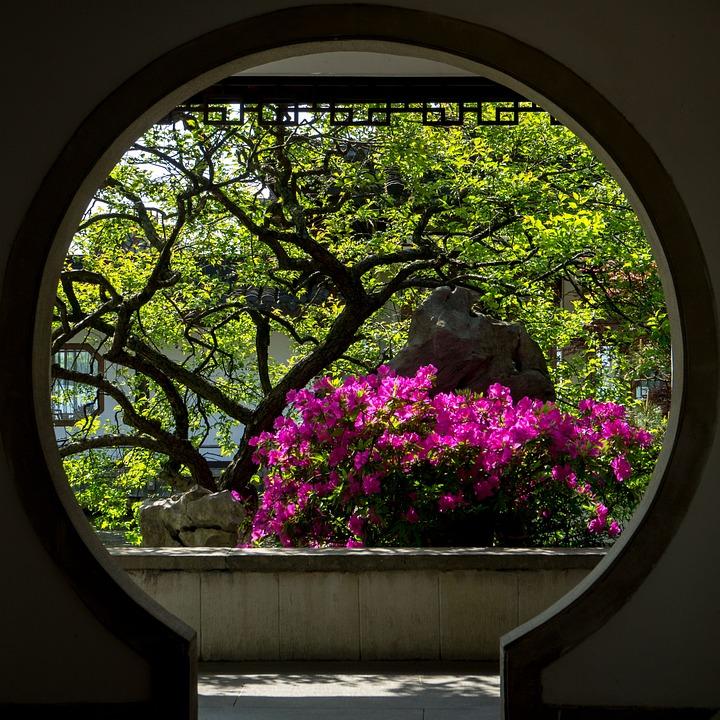 Flower, Garden, Circle, Gallery, Landscape, Building