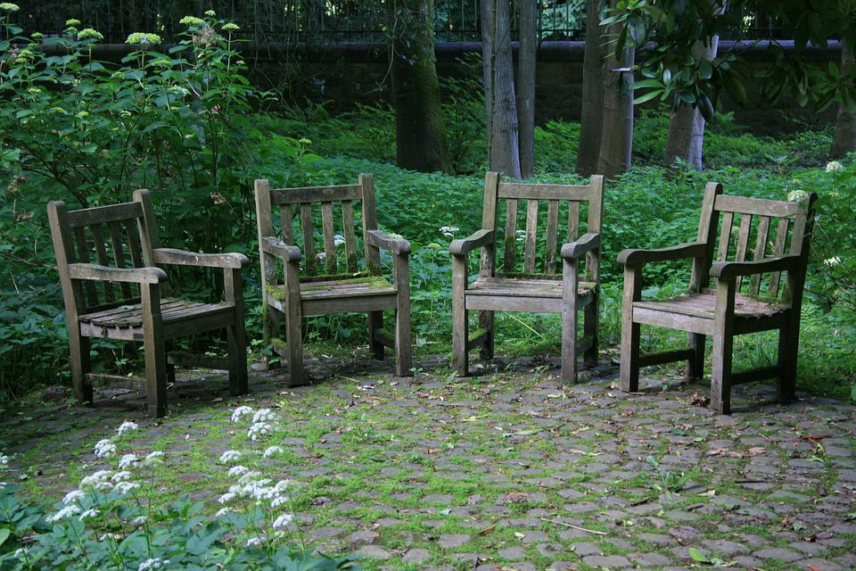 Wood, Seat, Garden, Leaf, Bank, Chairs, Autumn Time