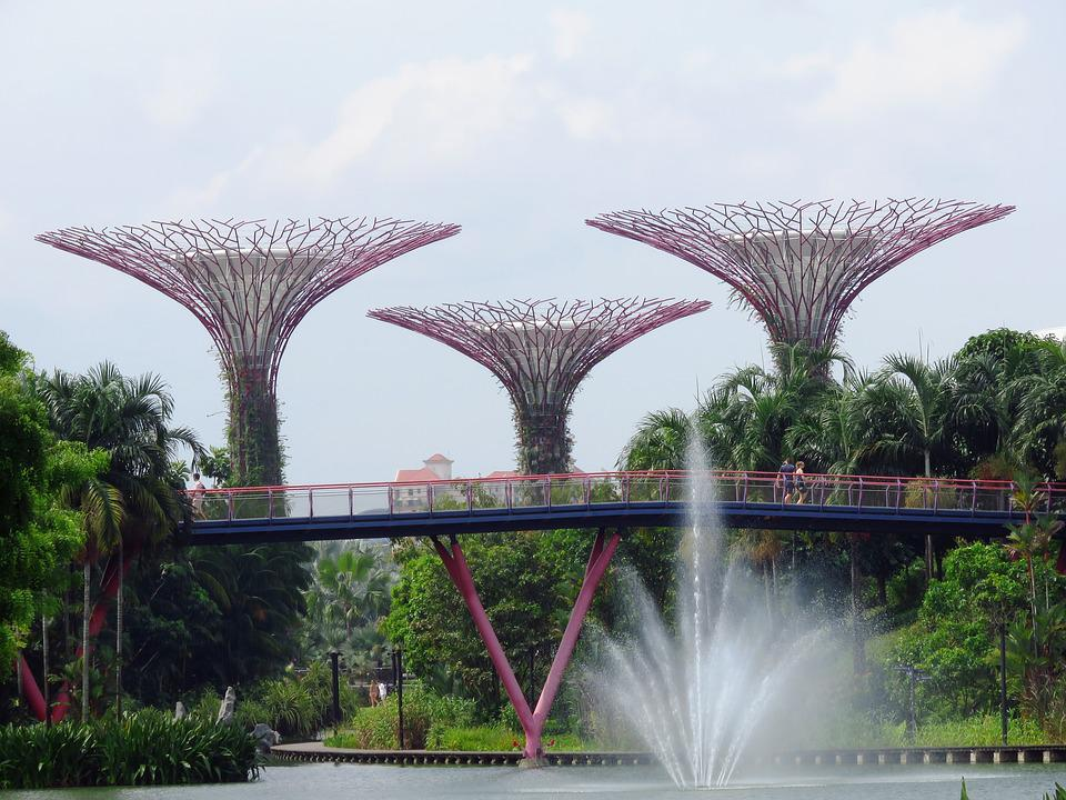 Singapore, Garden By The Bay, Marina, Tourism, Garden