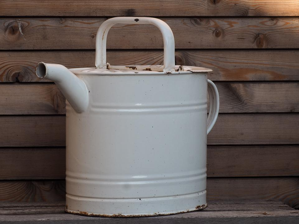Watering Can, Garden, Nature, Casting, Irrigation