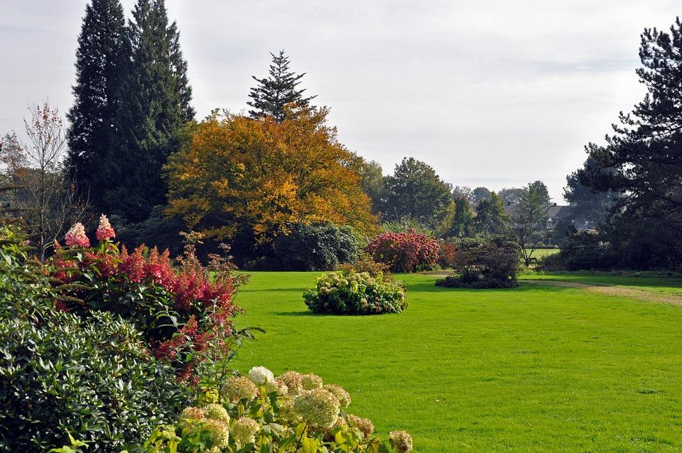 Garden, Park, English Garden, Nature, Horticulture