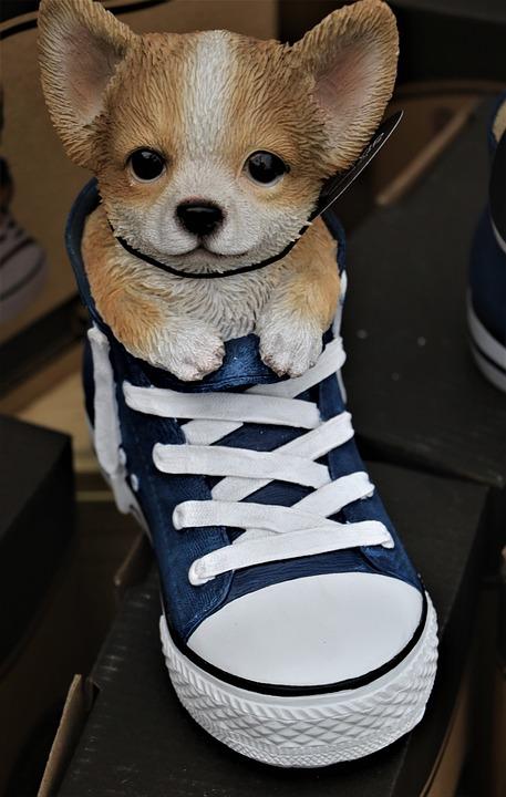 Puppy, Shoe, Ceramic, Ornament, Garden Ornament, Dog