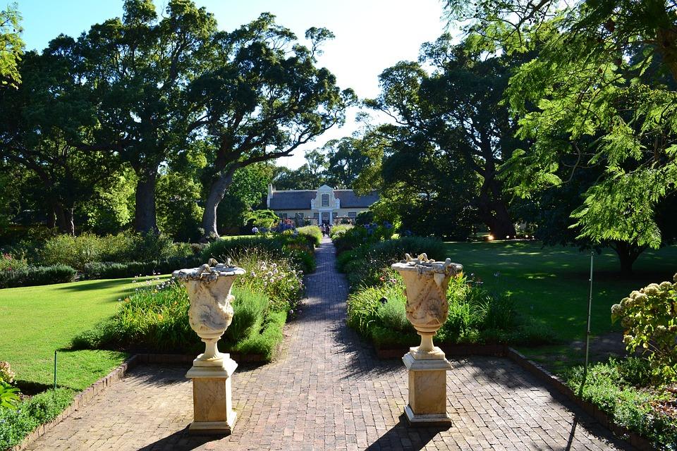 Garden, Tree, Nature, Summer, Park