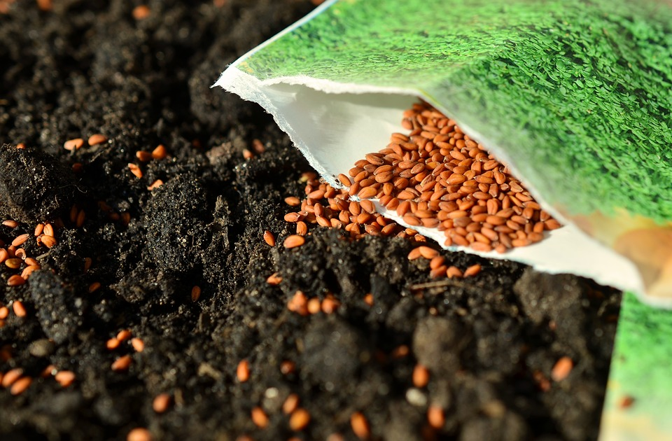 Seeds, Sow, Garden, Cross, Gardening, Garden Soil