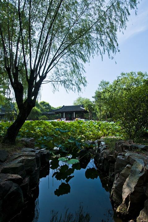 Suzhou, Start Garden, Garden, Hawthorn, Lotus Leaf