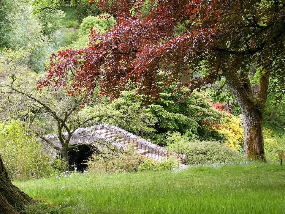 Garden, Vegetation, Bridge, Stream, Trees, Color, Red