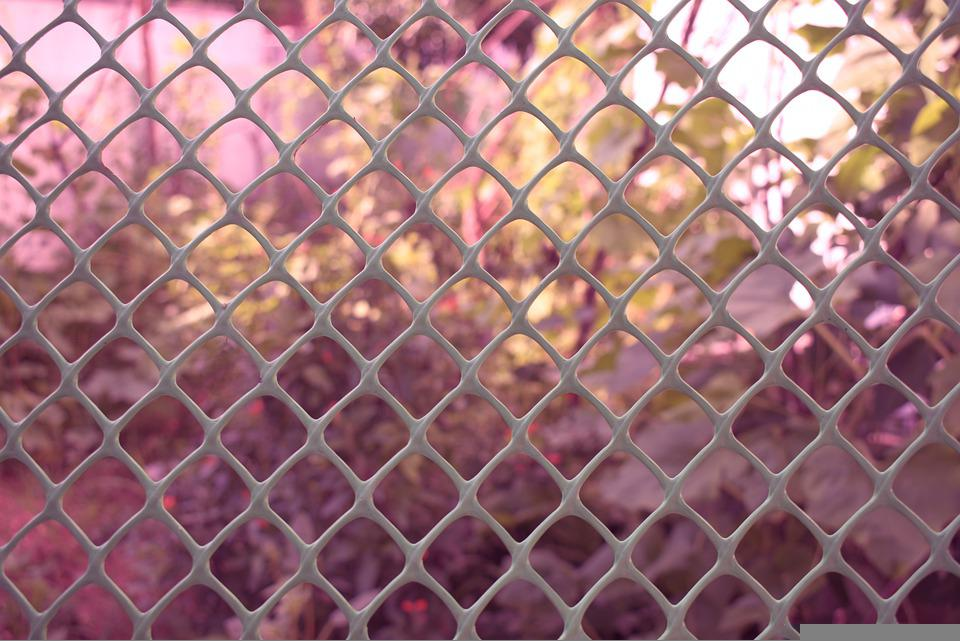 Fence, Garden, Wire Mesh, Outdoors, Film, Manager
