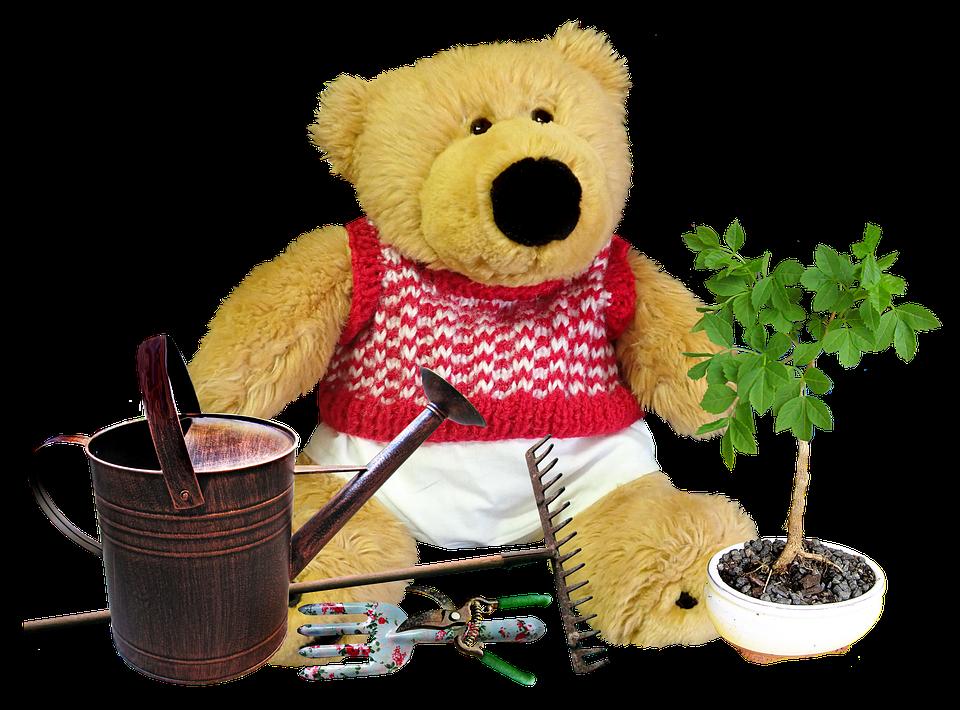 Teddy, Bear, Toy, Gardener, Cute, Garden Tools