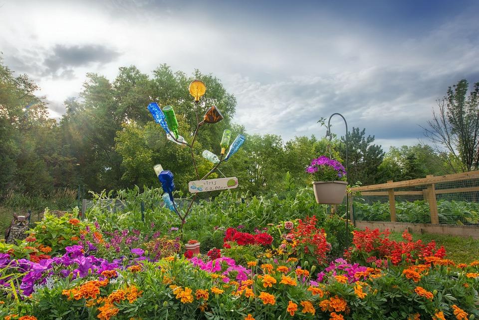 Flower Garden, Floral, Gardening, Landscape, Colorful