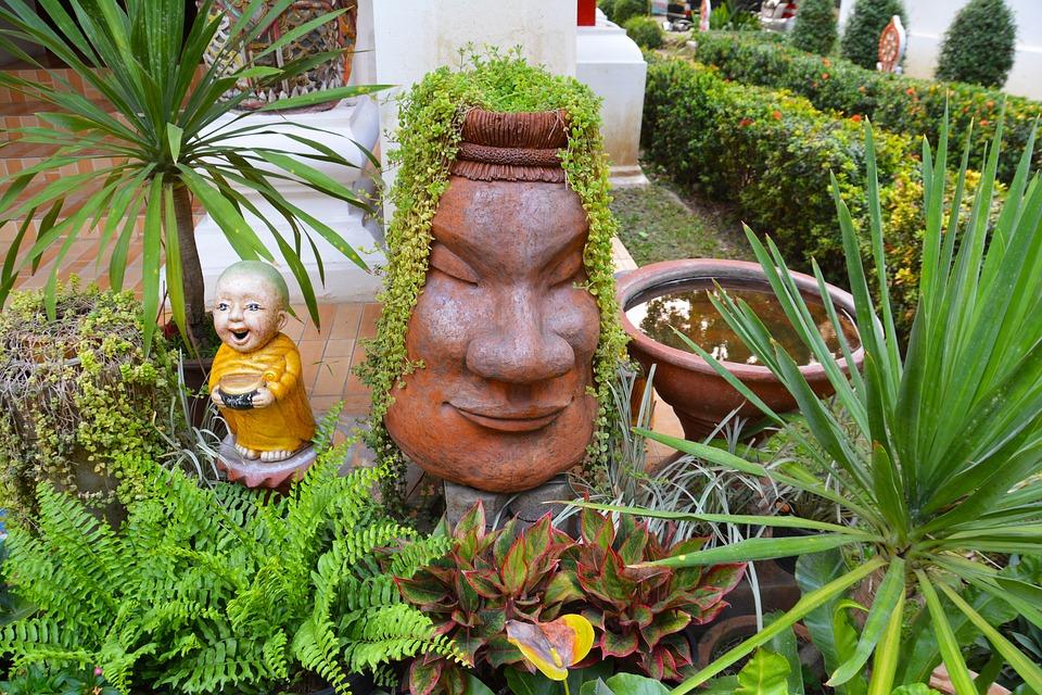 Garden, Shrubs, Bushes, Gardening, Green, Nature, Plant