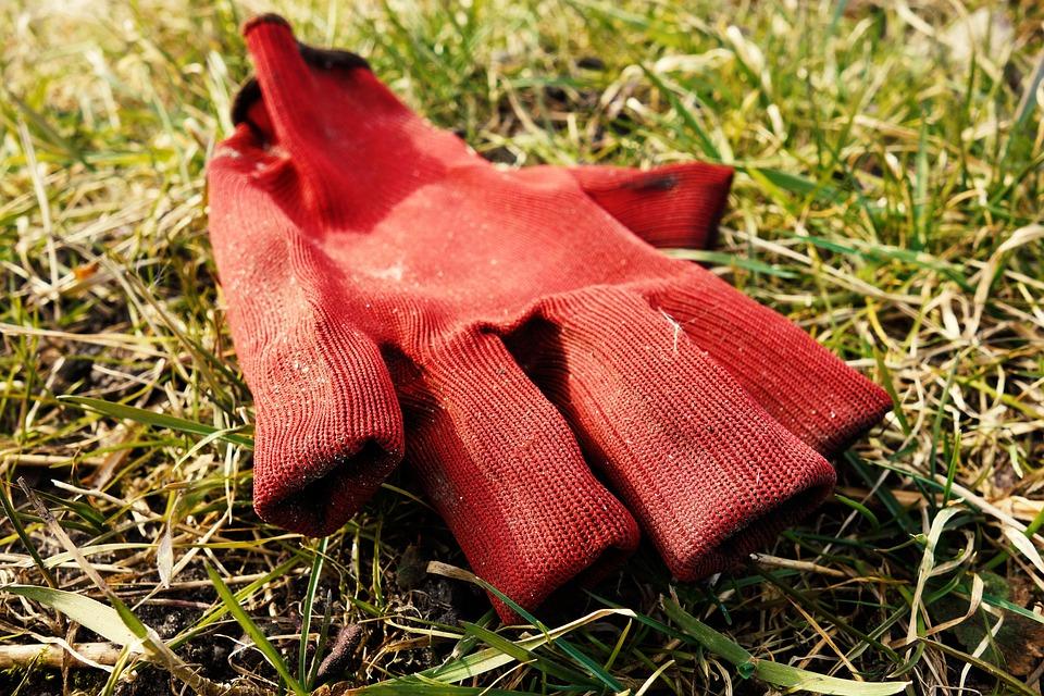 Work Glove, Glove, Work, Hand, Protection, Gardening