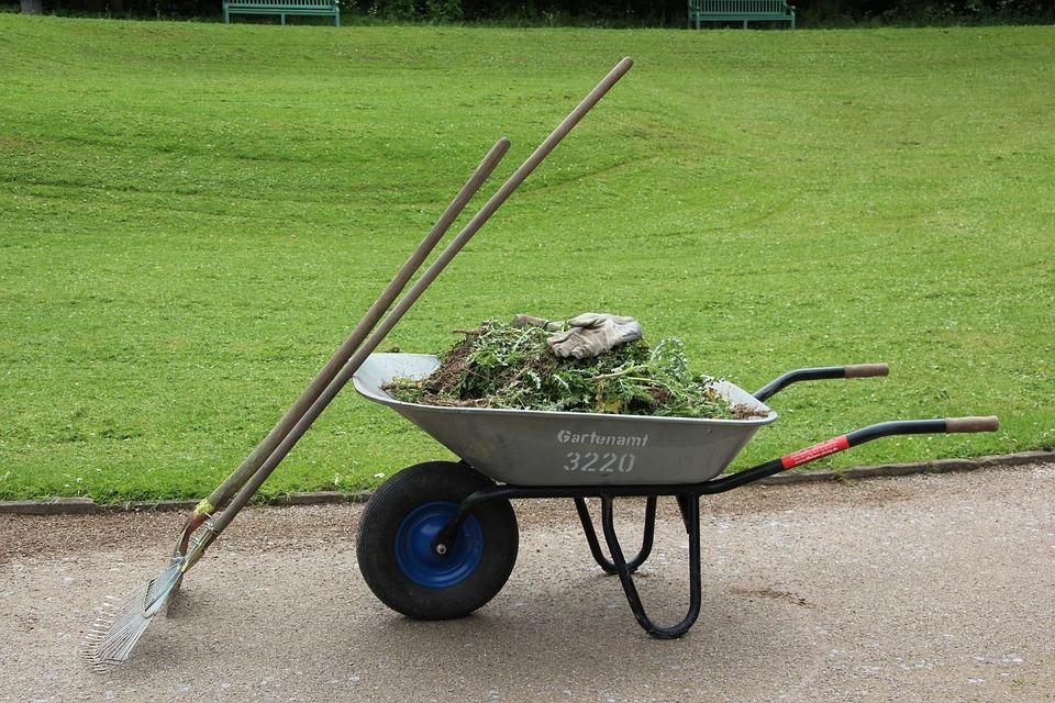 Wheelbarrow, Garden, Gardening, Work, Cart, Transport