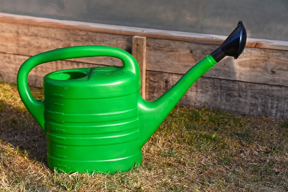 Watering Can, Garden, Gardening, Water, Watering