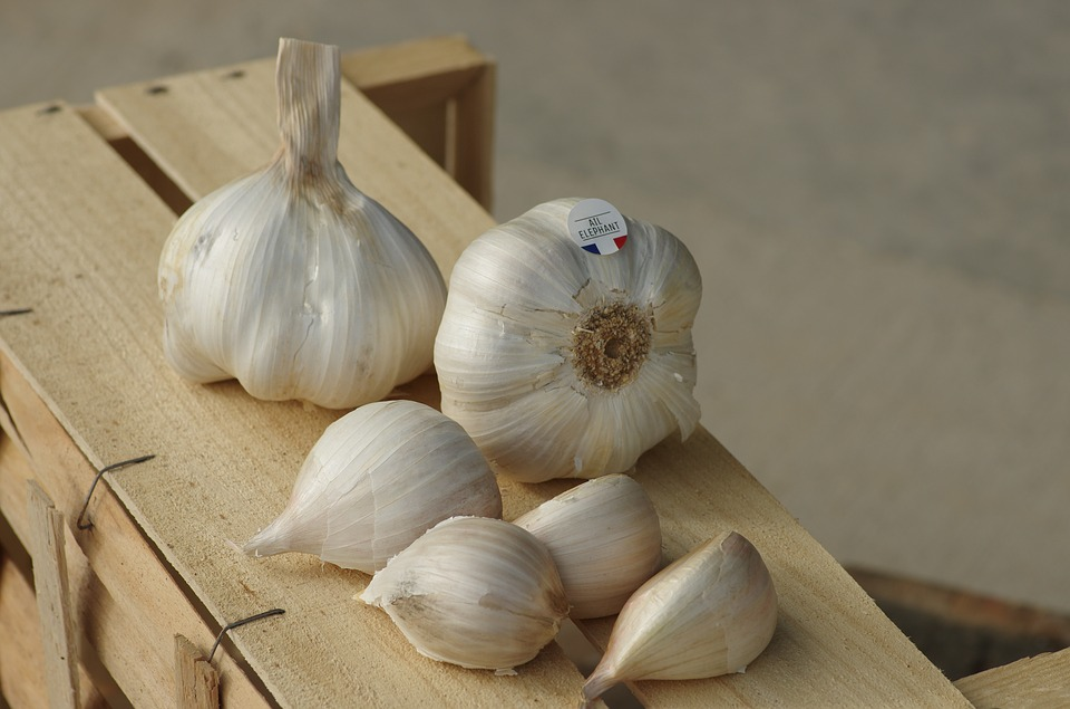 Garlic, Garlic Elephant, Food, Garlic Grown, Kitchen