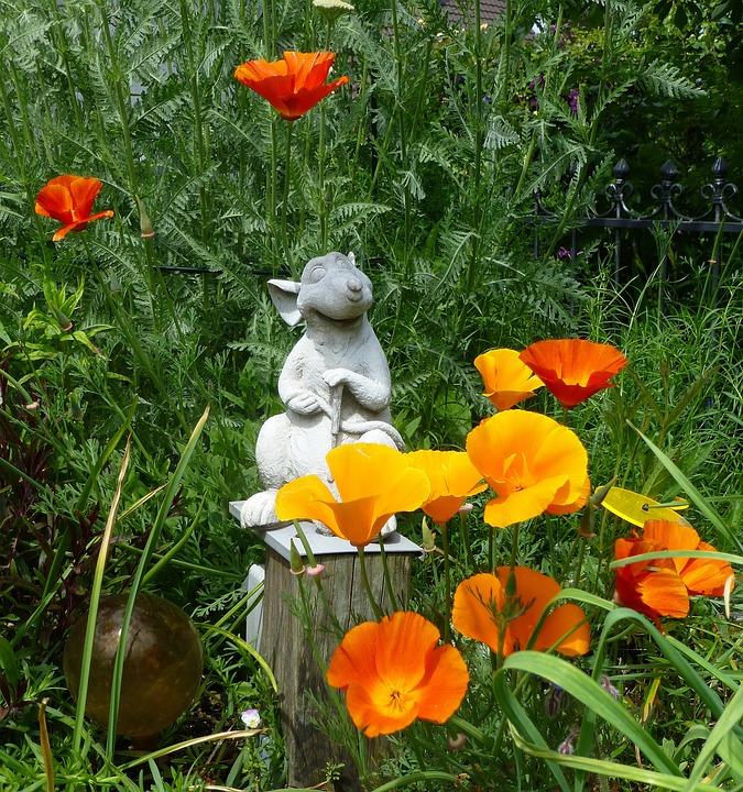 Gartendeko, Gardener, Gold Poppy, Sleepy, Bright