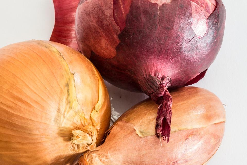 Onions, Bolle, Kitchen Onion, Gartenzwiebel