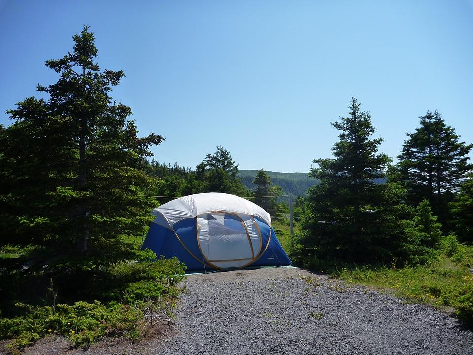 Camping, Tent, Landscape, Québec, Gaspésie, Trees, Fir
