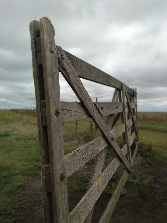 Gate, Field, Landscape, Nature, Rural, Agriculture