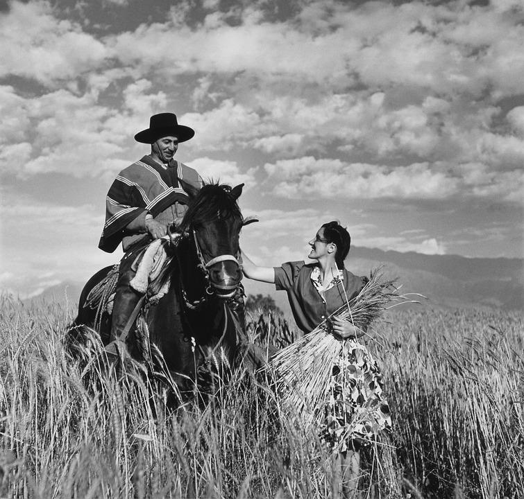 Gaucho, Reiter, Horse, Ride, Black And White, Arabs