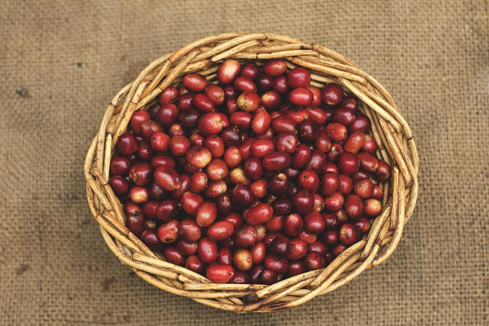 Coffee, Coffee Beans, Gayo Coffee, Red Beans, Straw