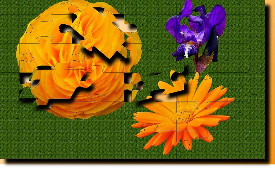 Flower, Puzzle, Color, Wallpaper, Geometry, No Person