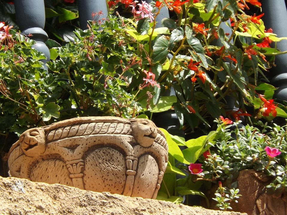 Flower, Midday, Balcony, Geranium, Stone, Pot