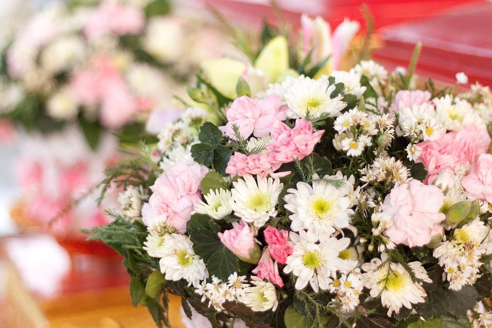 Gerbera Flowers, Flowers, Spring, White, Pink, Bright