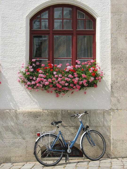 Germany, Bicycle, Window, Bike, Germany Street