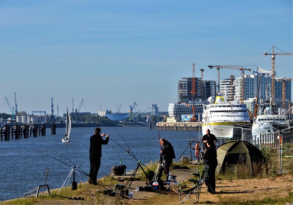 Fishing, Port, Hafencity, Germany, Grasbrook, Hamburg
