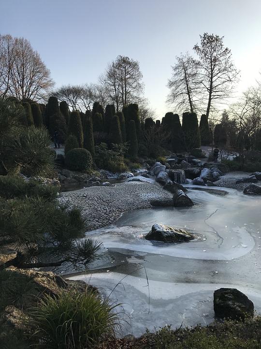 Bonn, Germany, Places Of Interest, Garden, Japanese