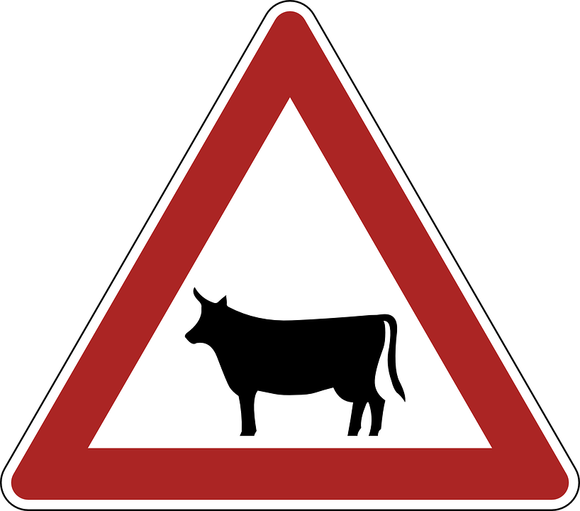 Animals, Danger, Warning, Road Sign, Traffic, Germany