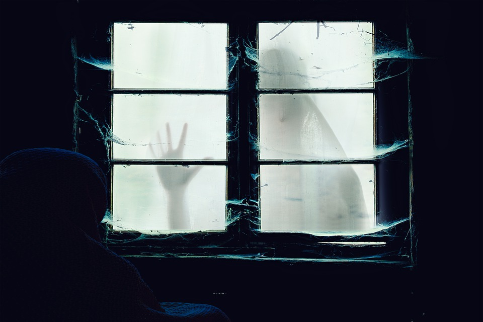 Window, Ghost, Shadow, Halloween, Terror, Fear, Dark