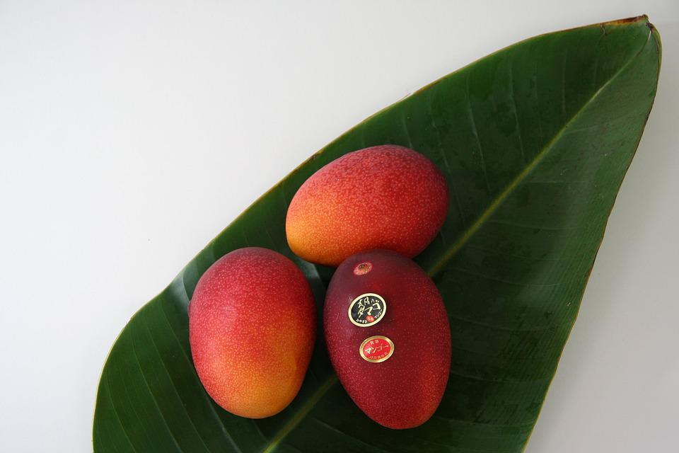 Fruit, Mango, Egg Of The Sun, Gift, Apple Mango
