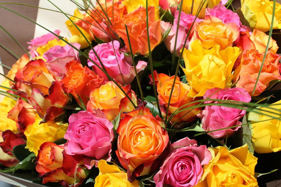 Free photo Gift Summer Flowers Roses Pink Bouquet Orange - Max Pixel